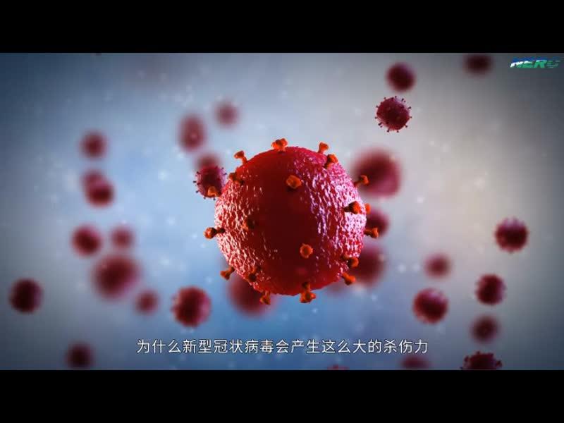 55.病毒的特性及扩散原理